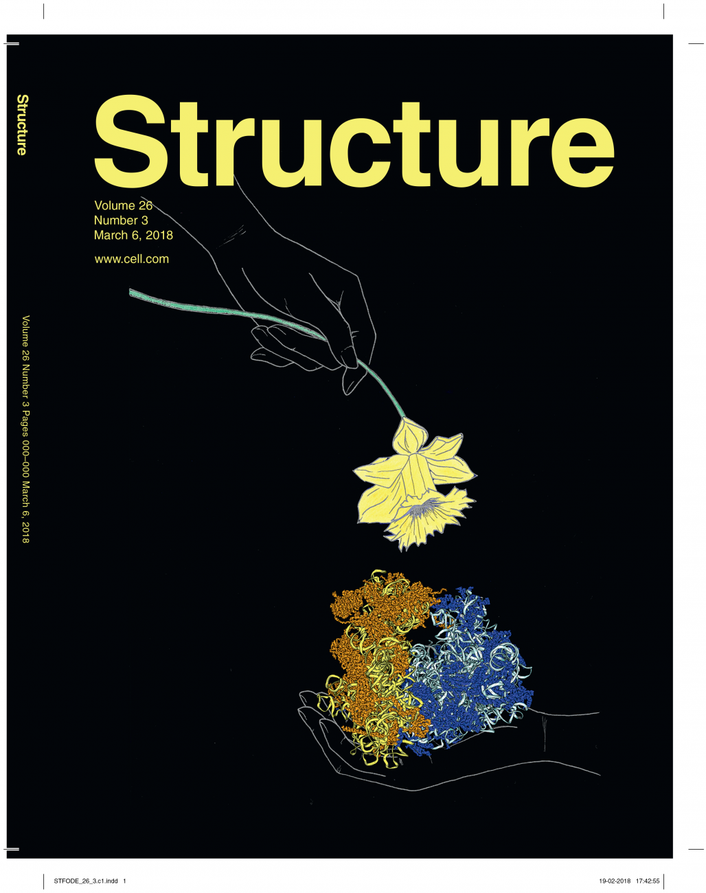 CoverStructureMarch2018